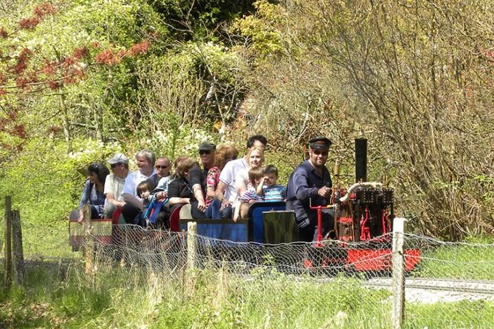 Miniature Garden Railway